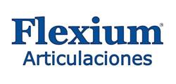 logo-flexium